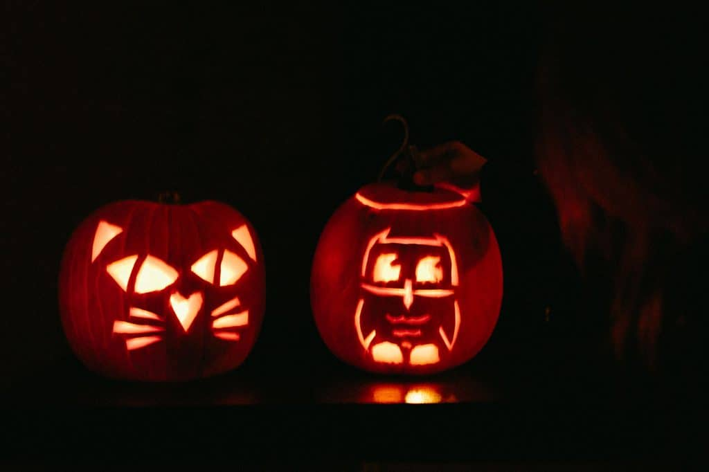 Two pumpkins lit for halloween, one is a cat, the other is an owl